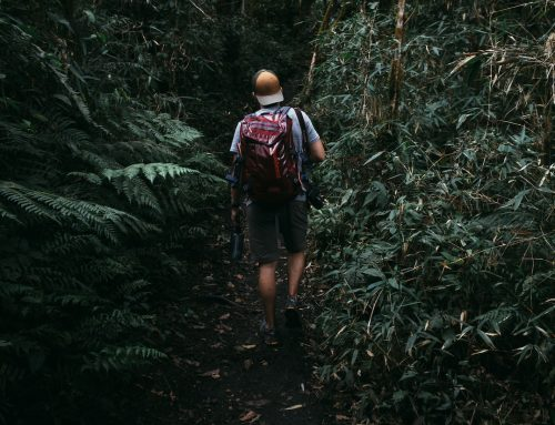 An Explorer's Survival Guide to the Darkness
