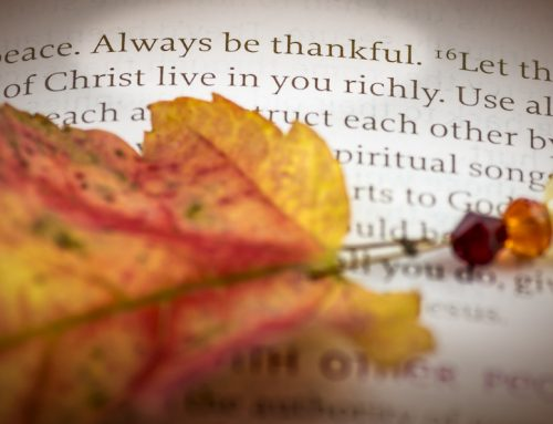 Thanksgiving Day: It Came From a Different Place